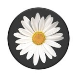 Popsocket  White Daisy_